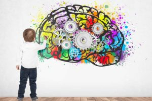 10 neuromythes et ou 10 croyances erronées sur le cerveau